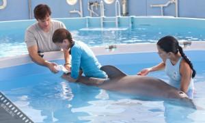 «История дельфина» - трогательное кино